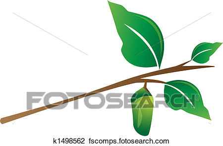 450x294 Clipart Of Cocoon Hanging From Tree Branch K1498562