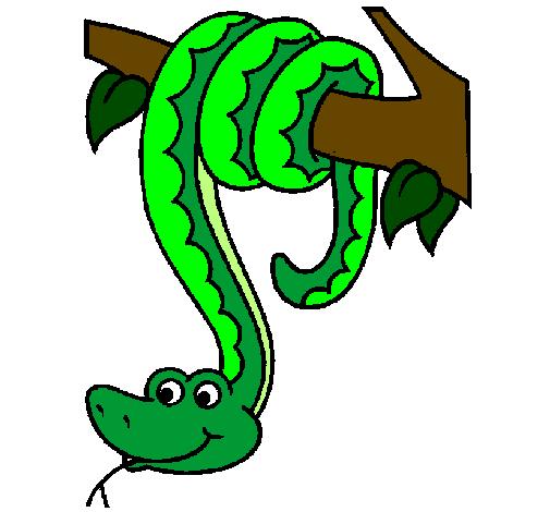 505x470 Serpent Clipart Hanging