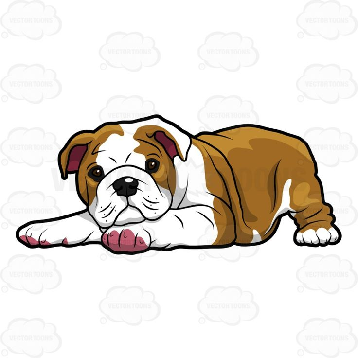 736x736 Best Bulldog Clipart Ideas Puppy Clipart, Cute