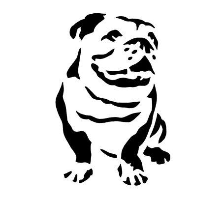 455x405 English Bulldog Clipart