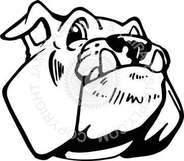 361x315 Bulldog Head