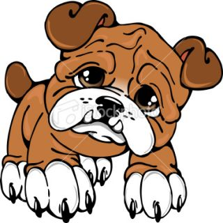 320x320 Bulldog Clipart Bulldog Puppy