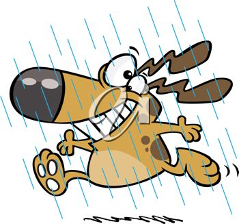 350x327 Picture Of A Happy Dog Frolickly Running In The Rain In A Vector