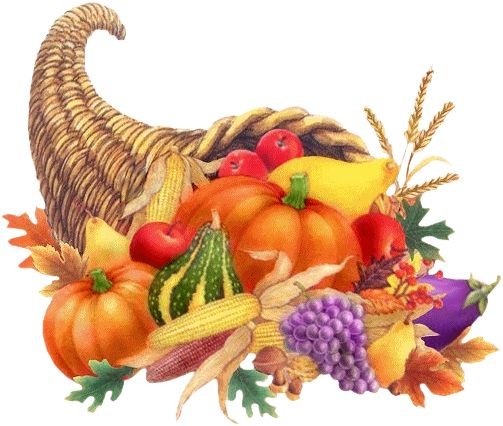 Happy Thanksgiving Turkey Wallpaper