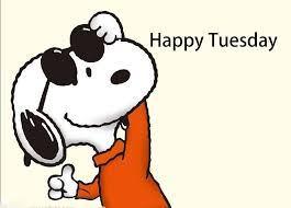 265x190 Tuesday Meme, It's Only Tuesday Meme, Funny Happy Tuesday Meme