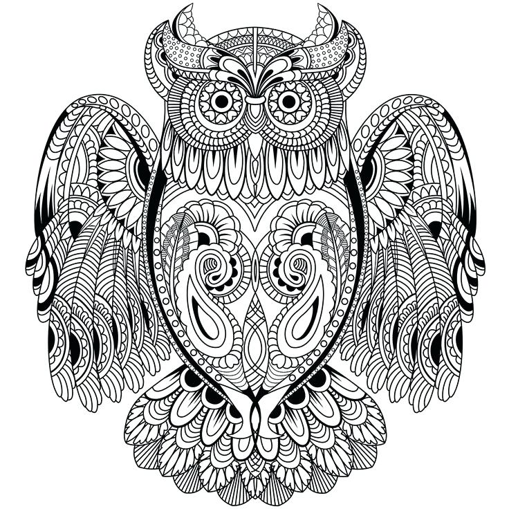 736x736 Owl Coloring Pages Outstanding Printable Owl Coloring Pages New