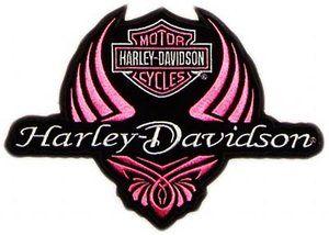 300x214 Harley Davidson On Harley Davidson Logo Logos And Eagles Clip Art
