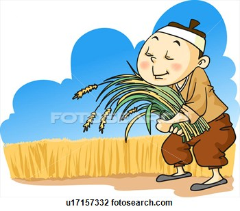 350x309 Rice Clipart Harvesting Rice