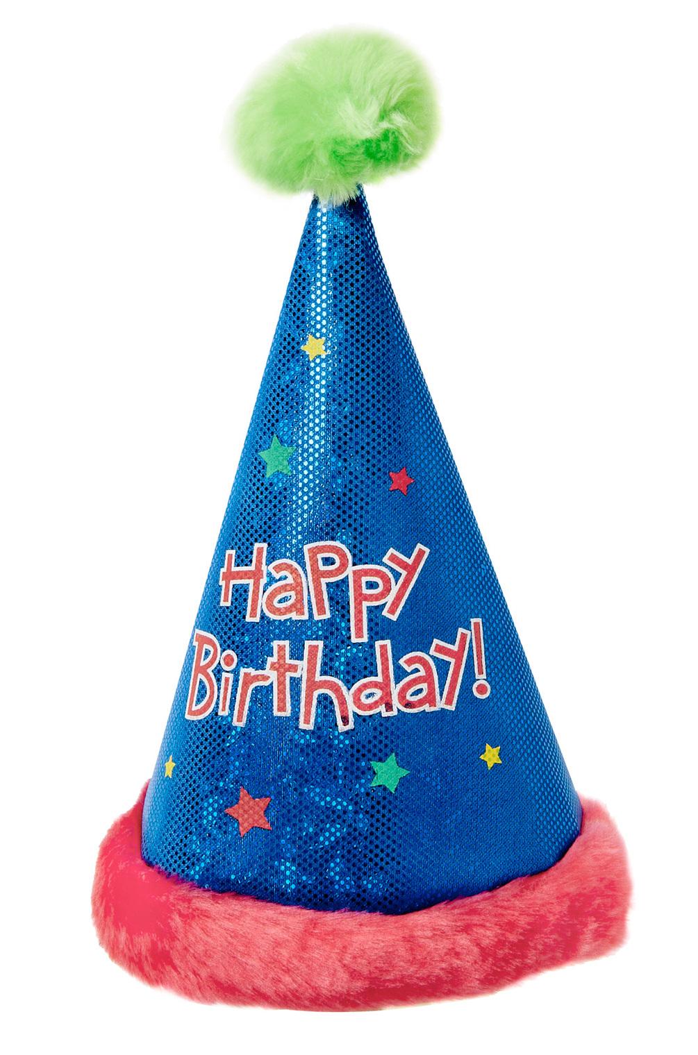 1005x1520 Pink Birthday Hat Clipartbarn
