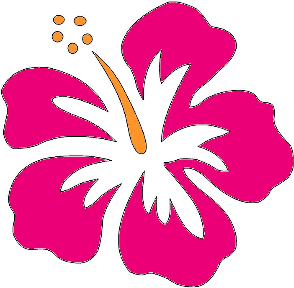 960x939 Hawaiian Flowers Clipart Biezumd