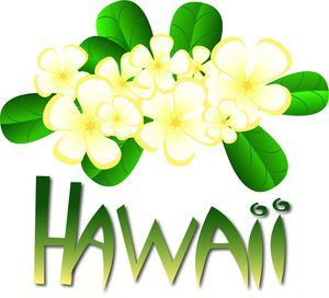 300x272 Dazzling Ideas Hawaiian Clipart Clip Art Free Downloads Images