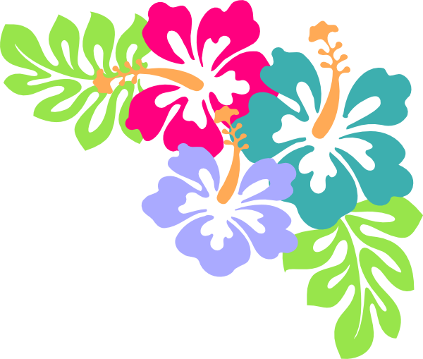 Hawaiian Flower Border Free Download Best Hawaiian Flower Border