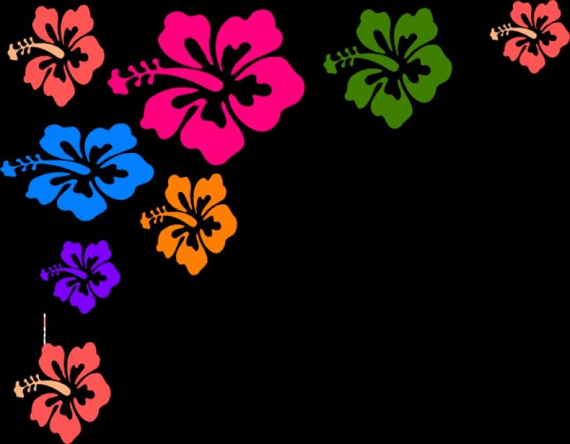 Hawaiian Flower Border | Free download on ClipArtMag
