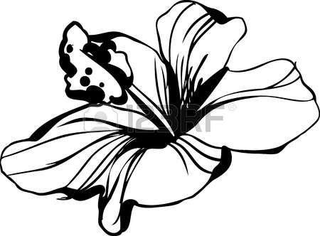Hawaiian Flower Clipart Black And White