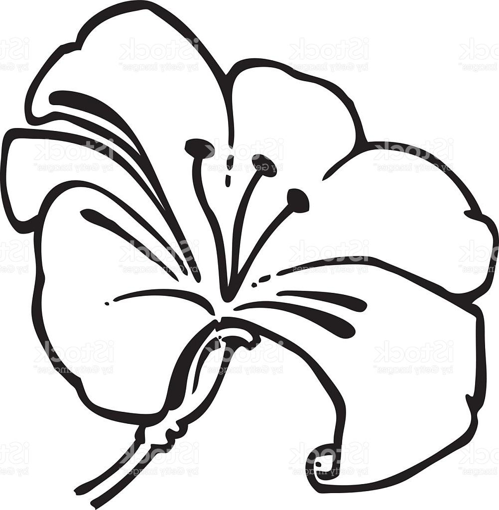 Hawaiian Flower Clipart Black And White Free Download Best