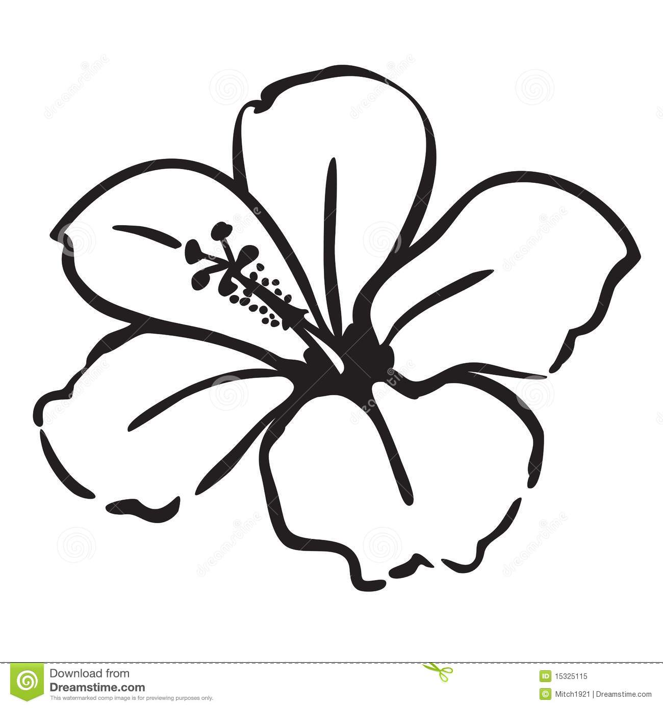 Hawaiian flower drawing free download best hawaiian flower drawing 1300x1390 hibiscus drawing izmirmasajfo
