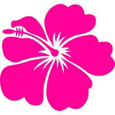Hawaiian Flowers Border