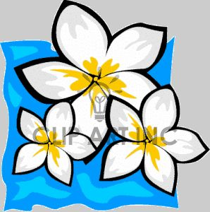 298x300 29 Best Hawaiian Flowers Images Draw, Drawing