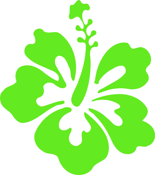 534x600 Hibiscus Clipart Green