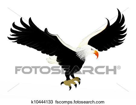 450x349 Hawk Mascot Illustrations And Stock Art. 190 Hawk Mascot