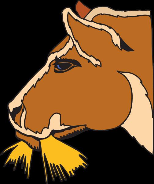 504x600 Horse Hay Cliparts 222783