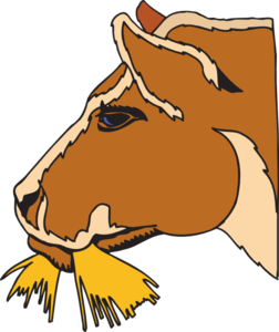 252x300 Cow Eating Hay Clip Art