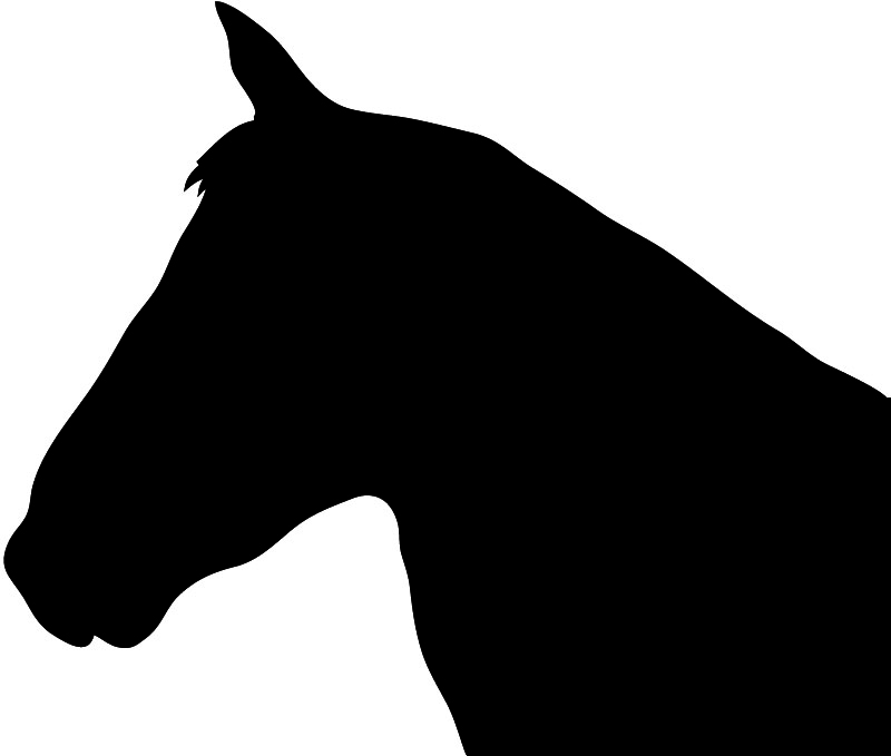 800x679 Horse head vector free download clip art on