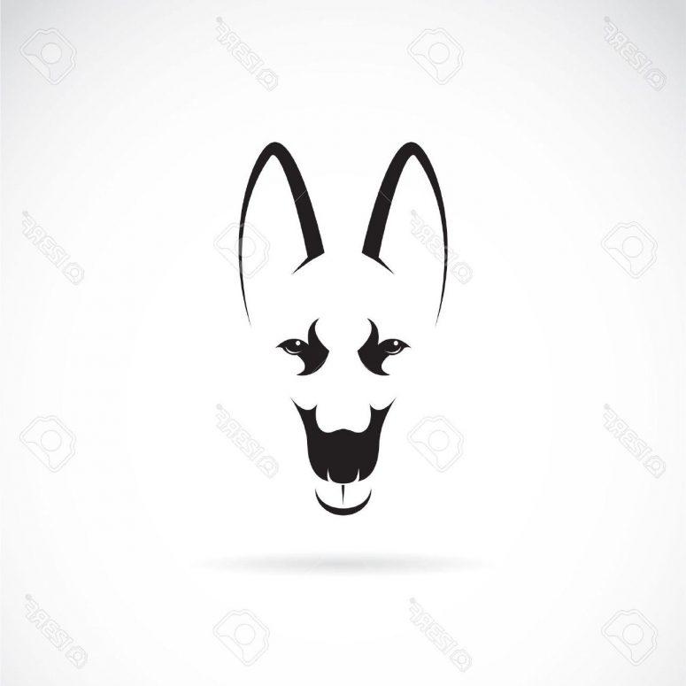775x775 Top German Shepherd Head Silhouette Vector Design Clip Art