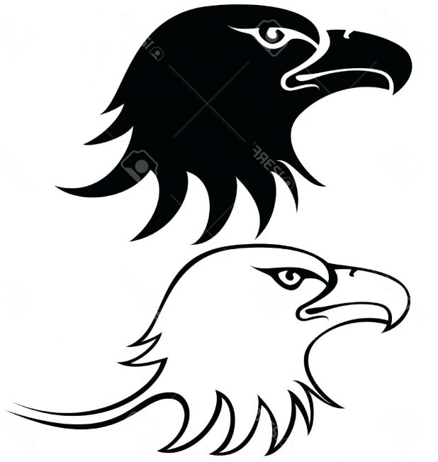 618x651 Best Eagle Head Outline Vector File Free 13 Surprising Duck