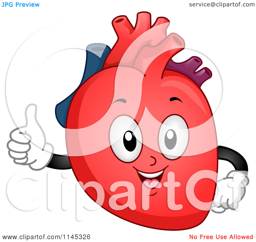1080x1024 Cartoon Human Heart Clipart