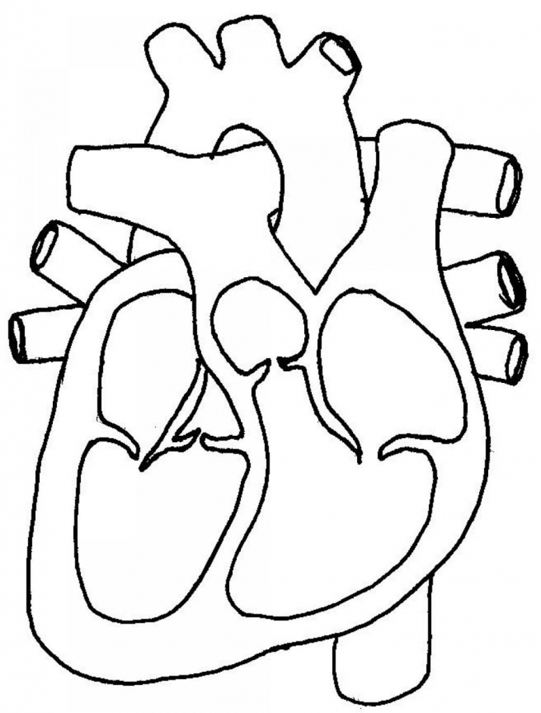 Heart pictures black and white free download best heart pictures 777x1024 black and white heart diagrams black and white heart diagrams pooptronica