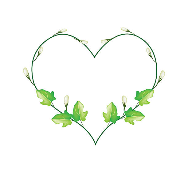 Heart Vine Clipart | Free download on ClipArtMag