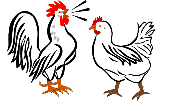 600x386 Hen And Rooster Clip Art