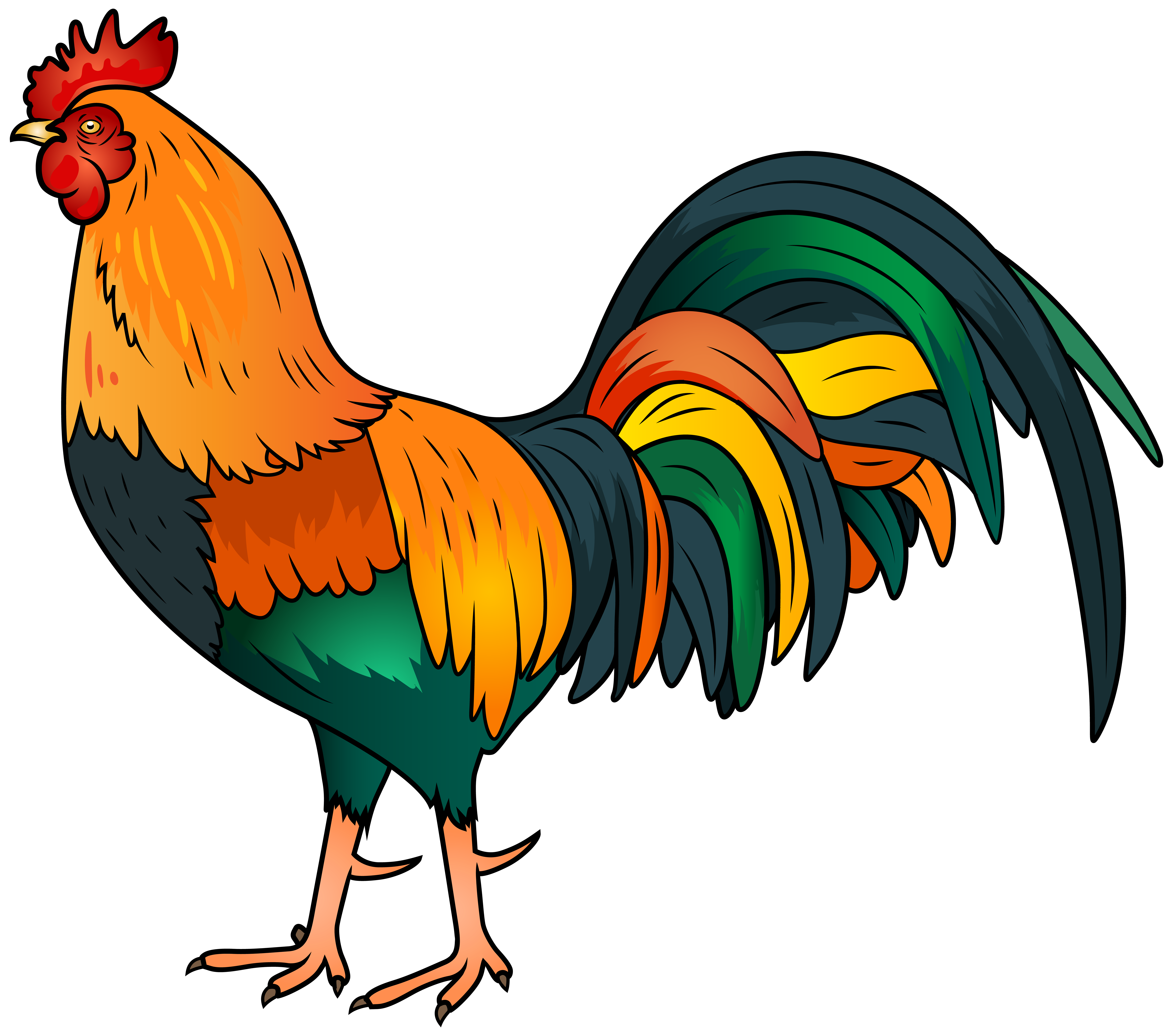 8000x7066 Rooster Clip Art