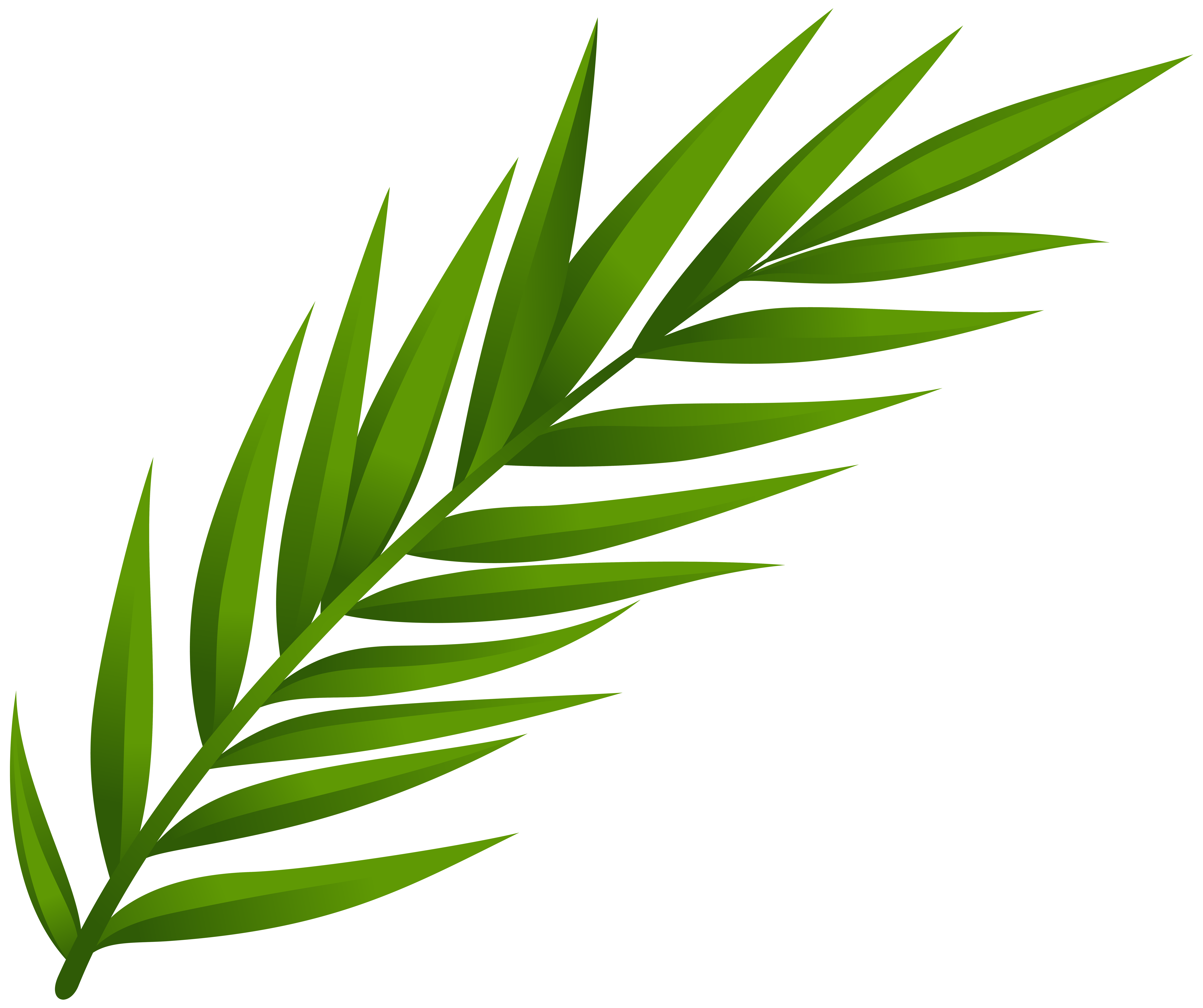Herbal Leaf Cliparts | Free download on ClipArtMag