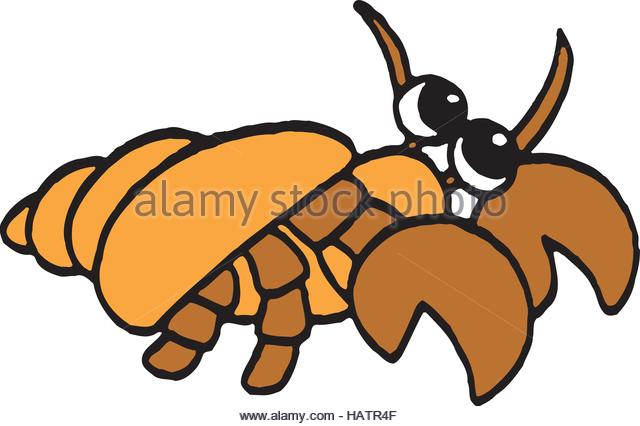 640x426 Hermit Crab Cut Out Stock Photos Amp Hermit Crab Cut Out Stock
