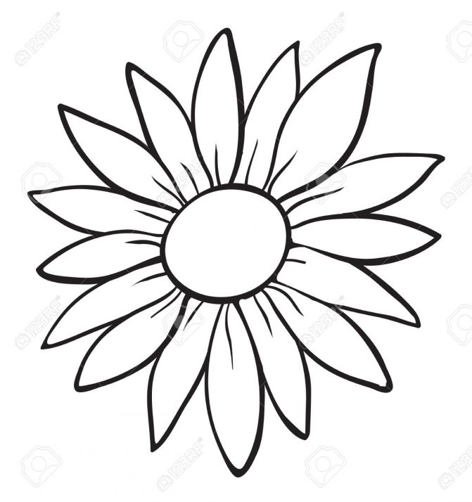 671x714 Coloring Pages Flower Outline Drawing Hibiscus Flowers Art
