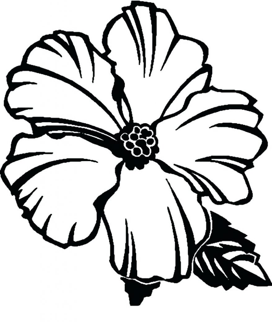 878x1038 Coloring Extraordinary Hibiscus Flower Outline. Hibiscus Flower