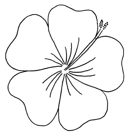 448x466 Hibiscus Flower Outline
