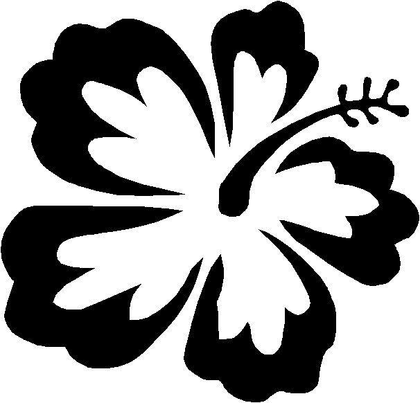606x582 The Best Hibiscus Flower Drawing Ideas Hawaiian