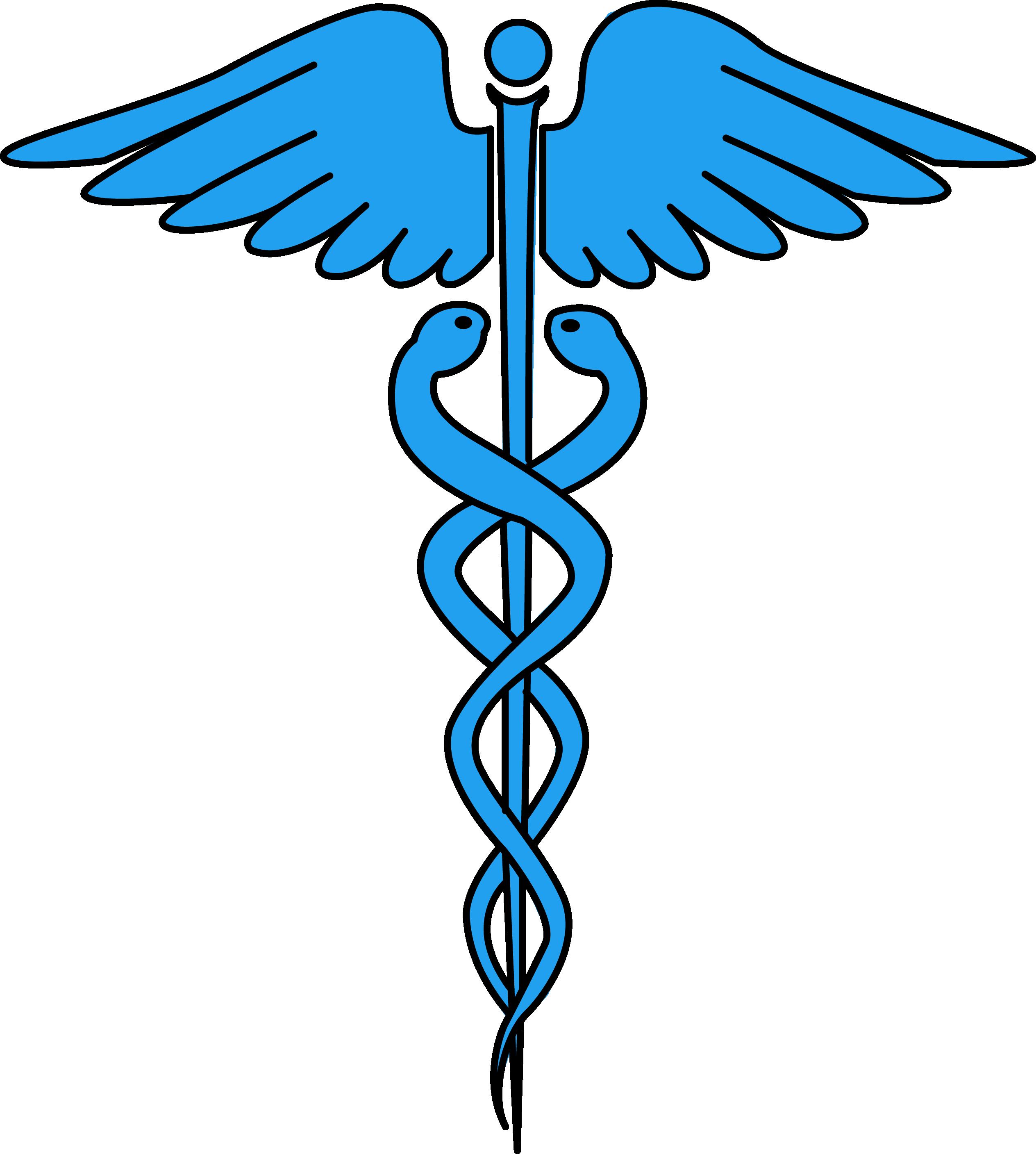 2528x2815 Image For Free Caduceus Medical Symbol Health High Resolution Clip
