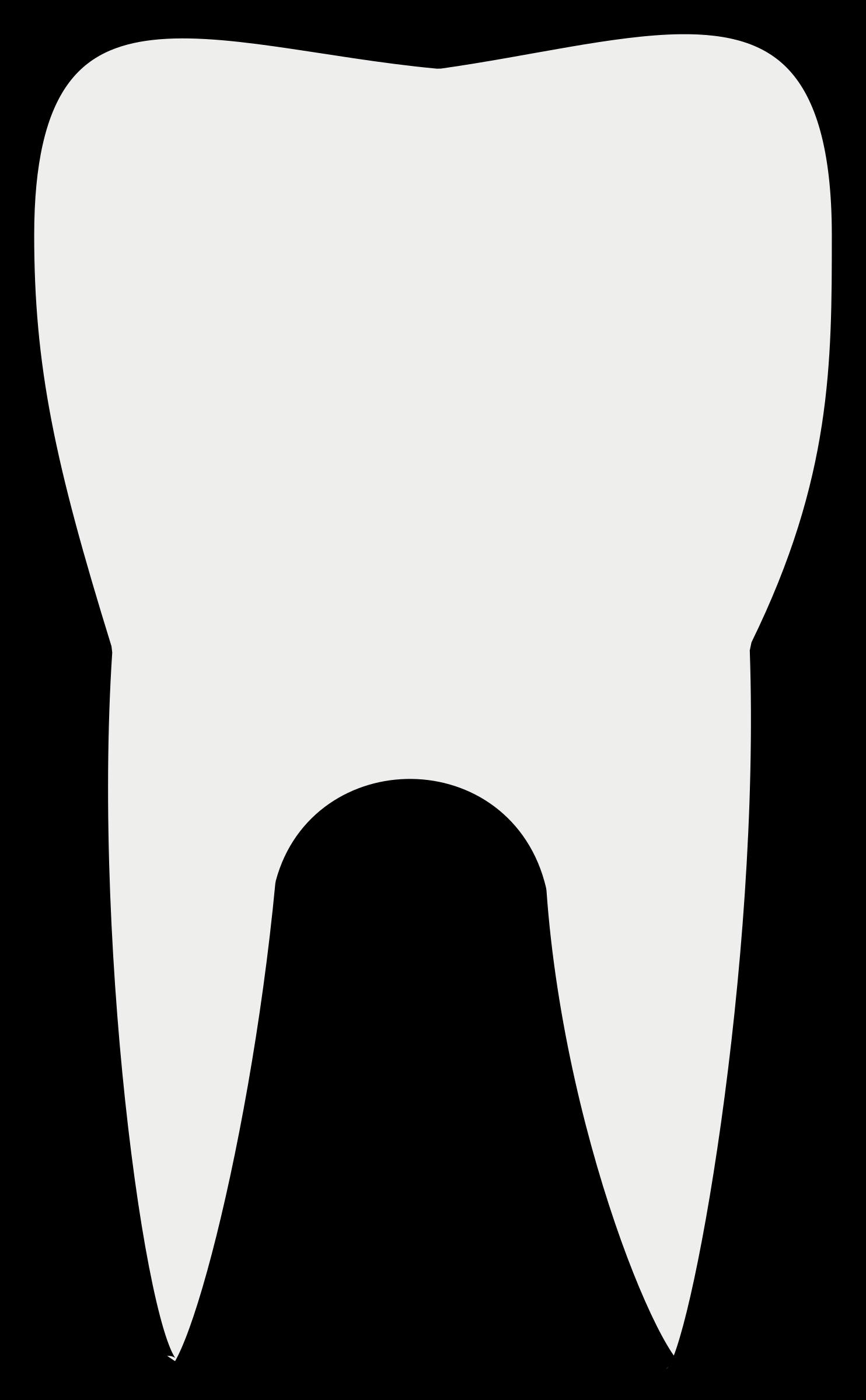 1484x2400 Teeth Clipart High Resolution