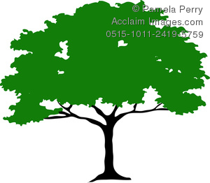 300x262 Tree Clipart High Resolution