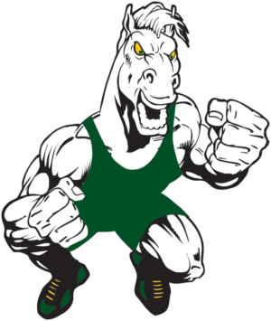 300x355 High School Wrestling Mounds View Wrestling