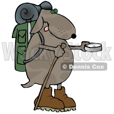 400x400 Using A Compass While Hiking Clipart Illustration Djart