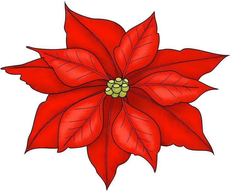 736x609 Best Christmas Poinsettia Ideas Poinsettia