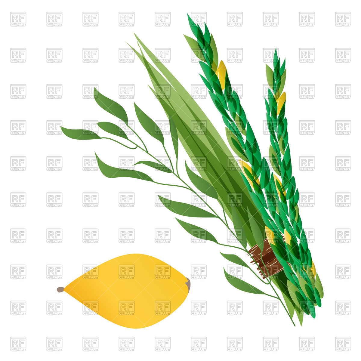 1200x1200 Symbols Of Jewish Holiday Succoth Royalty Free Vector Clip Art