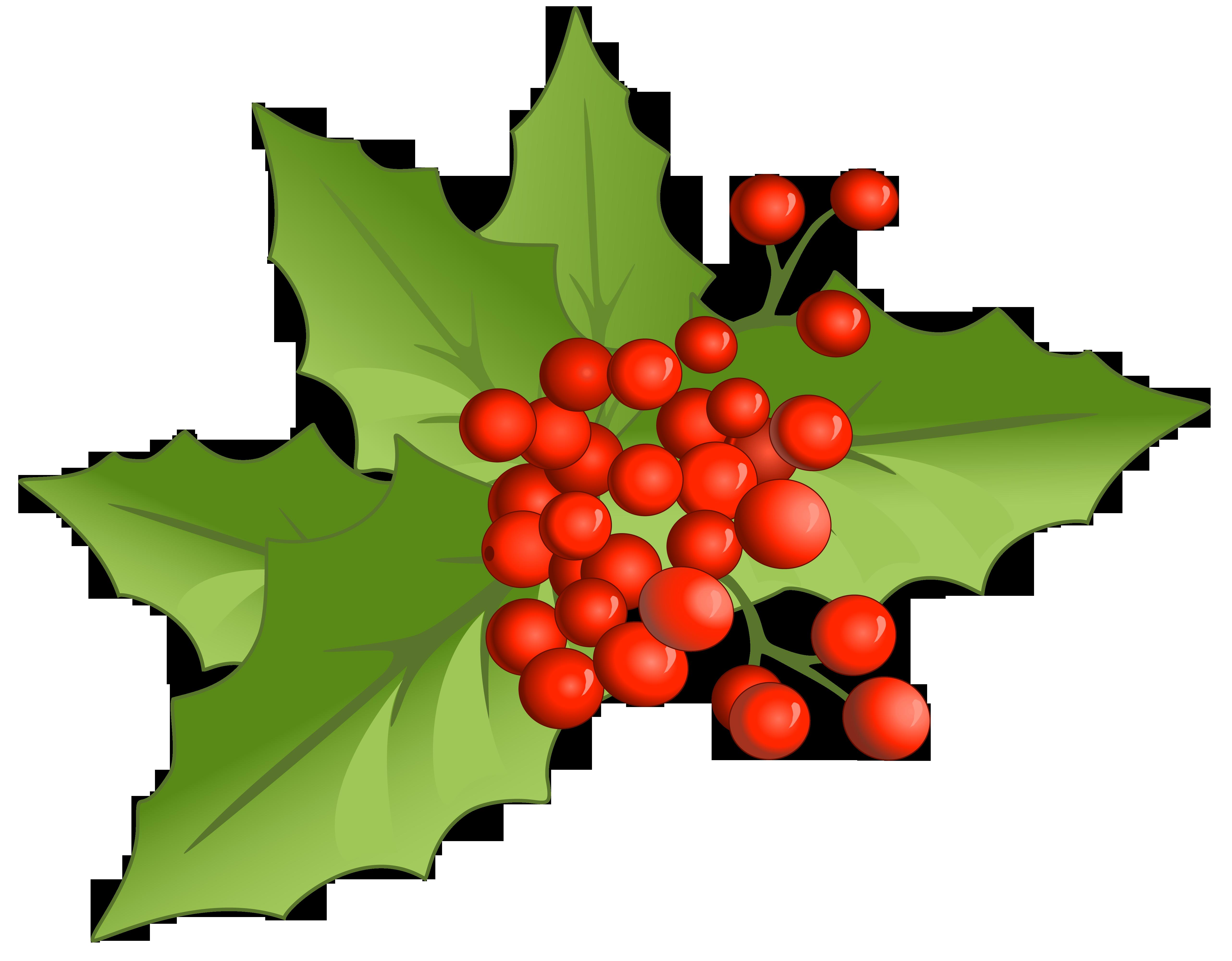 5128x4000 Christmas Greenery Clipart