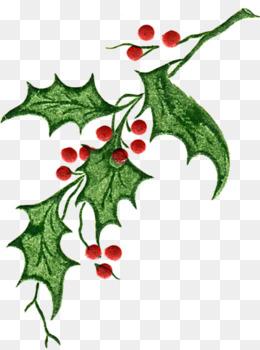 260x350 Christmas Greenery Clip Art