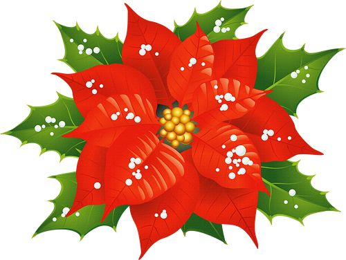 500x376 64 Best Clipart Christmas Flowers, Mistletoe, Wreaths Images
